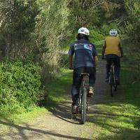 Explore Phillip Island via its many bike riding tracks