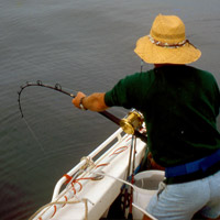 Phillip Island offers excellent fishing and boating opportunities